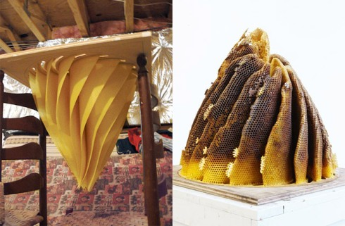 Hive art by Hilary Berseth and his bees