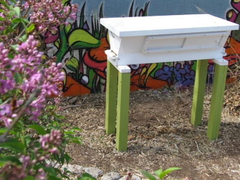 The Ann Hive, now with bees